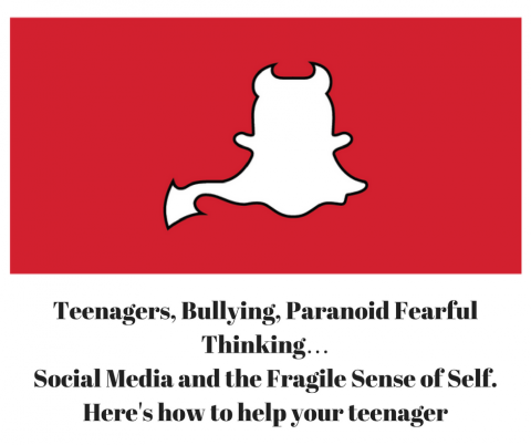 Teenagers, Bullying, Paranoid Fearful Thinking…Social media and the fragile sense of self